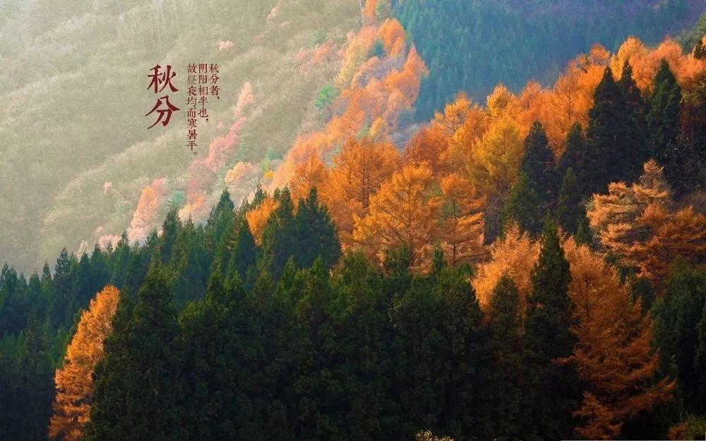 农历:八月十月   戊戌年 【狗年】   辛酉月戊午日   秋分