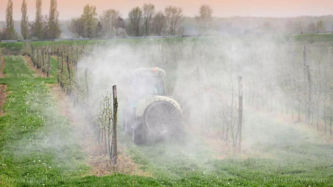 【健康】中毒事件頻發,法國禁用威百畝農藥