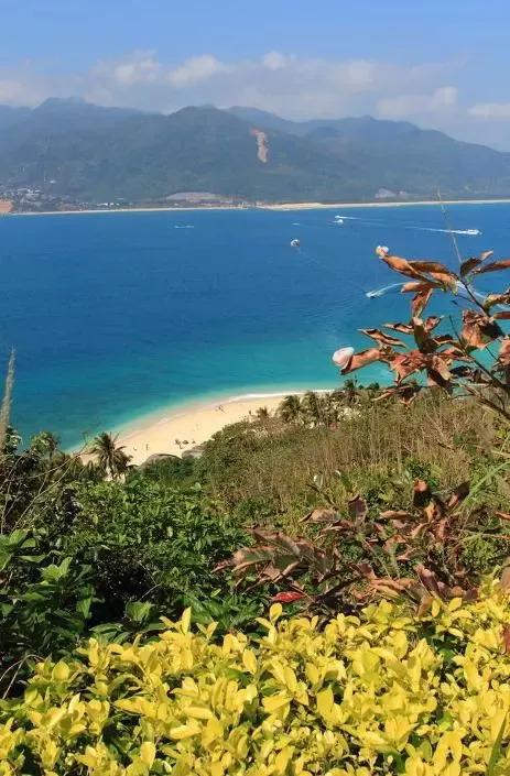 由于遠離城市,這里的海水污染少,島上風景秀麗,空氣清新,沙灘柔和