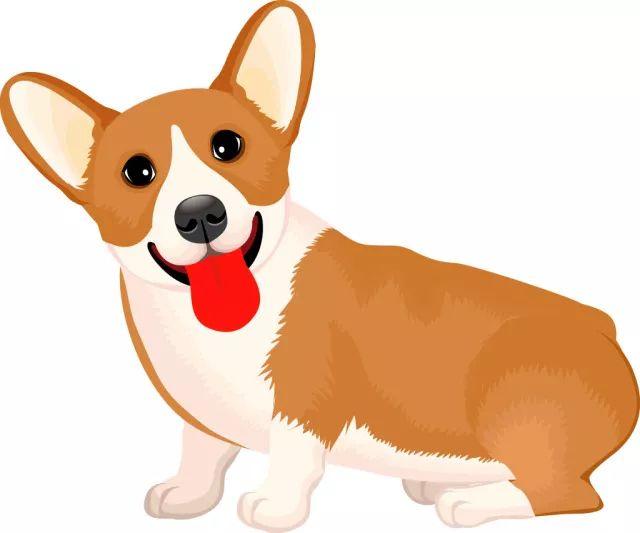 3.狗狗是一种可爱的动物