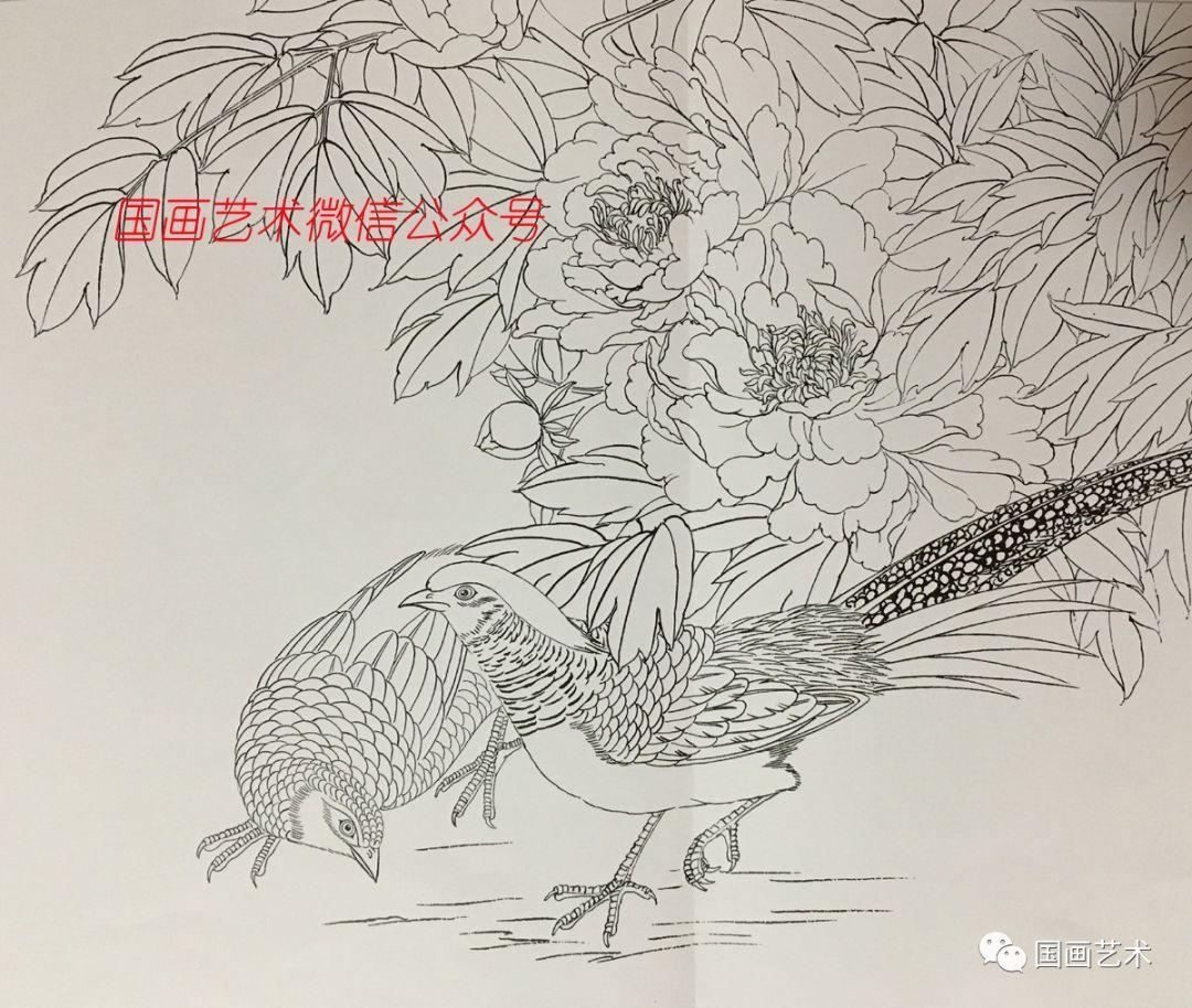 图文教程:工笔牡丹锦鸡画法步骤详解