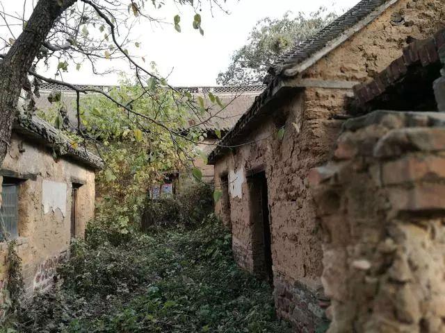 荥阳向南半小时 探访河南传统古村落 归程秋游万山湖