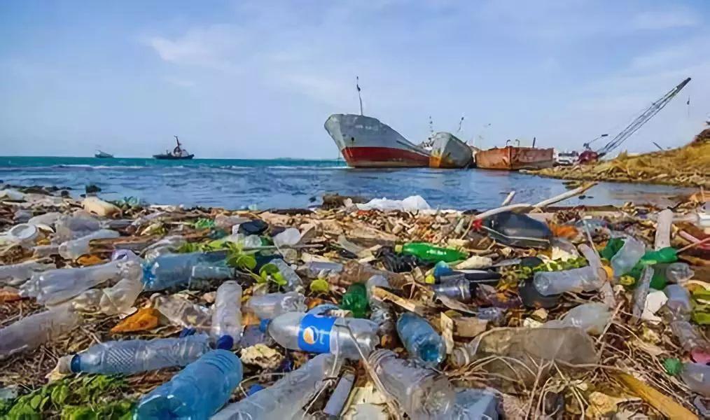 塑料垃圾污染波至1万米深海,塑料垃圾的最深地点太平洋马里