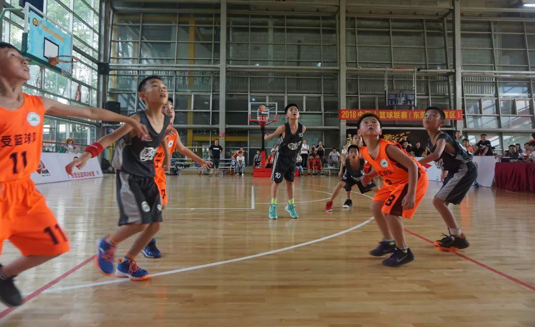 """""""小篮球,大梦想""""中国小篮球联赛东莞南城赛区落幕"""