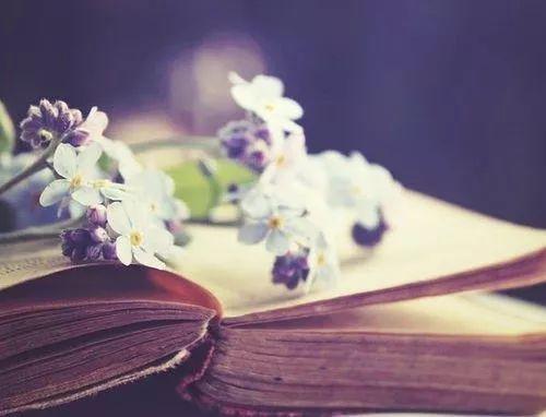 【书迷推文第五期】《我眷恋这世界》喻言时,《时光与