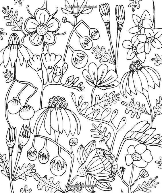 而且画什么,像什么     花一朵花,画一只喵星人   画一颗植物,一片