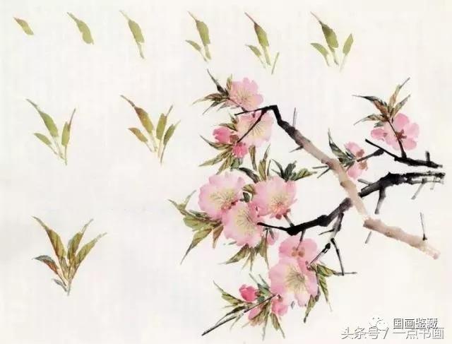 意笔桃花的画法步骤是自由的,可以先出枝干后点花叶,但必须预留花