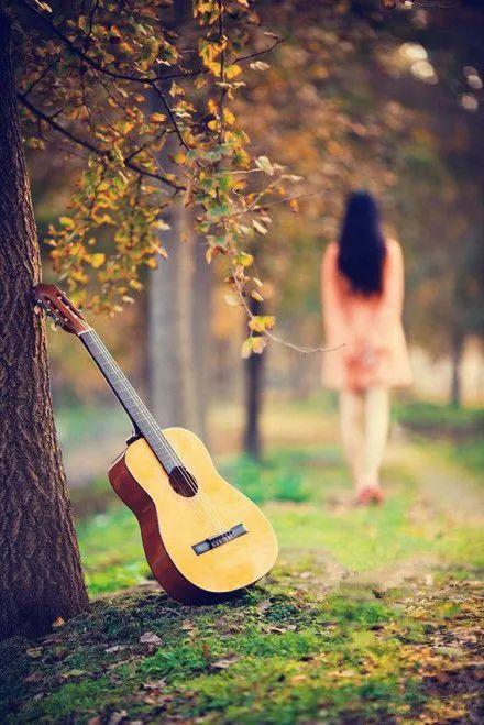 找一个秋日的清晨或午后,听一段喜爱的旋律,任秋的意韵在音符中慢慢