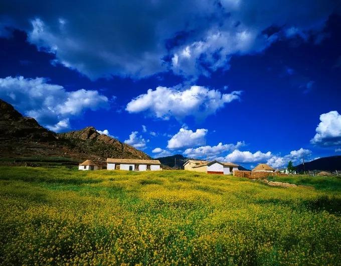 春天十天日出九天云,云飞雾绕,上下分层,盘环山峦,美不胜收.