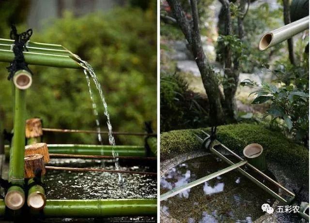 乡村旅游景观设计中,竹子的创意设计汇总