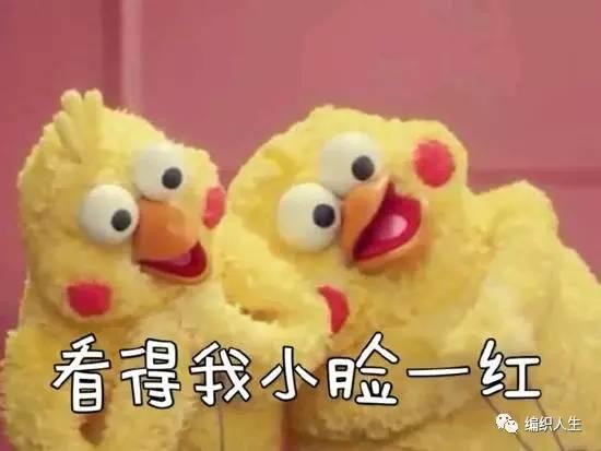 女孩情侣丨超萌的兄弟表情玩偶鸡,脆皮钩起鹦鹉钩针包表情帝头像图片