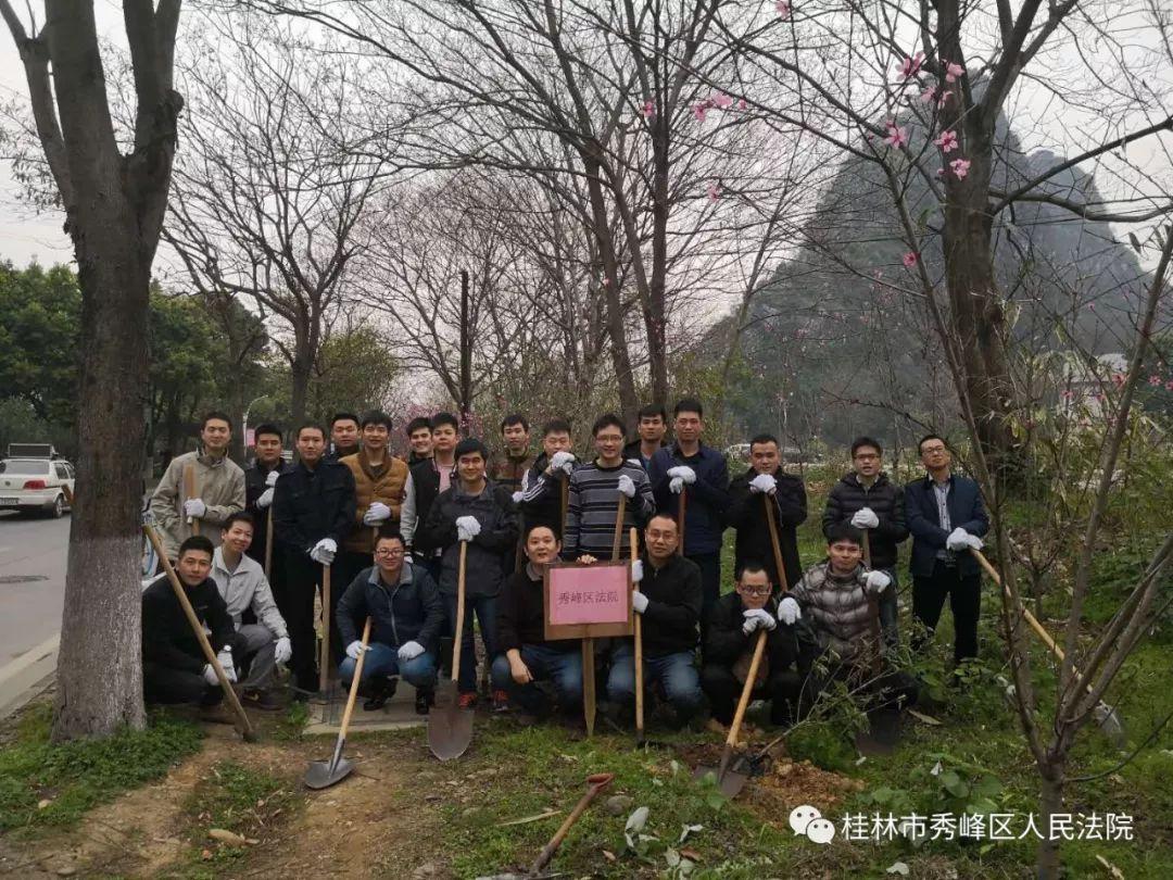 秀峰法院积极开展植树节活动