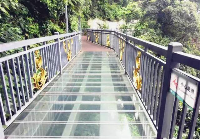 梅州市五指石风景区    白云山悬空玻璃桥   白云山云岩景区