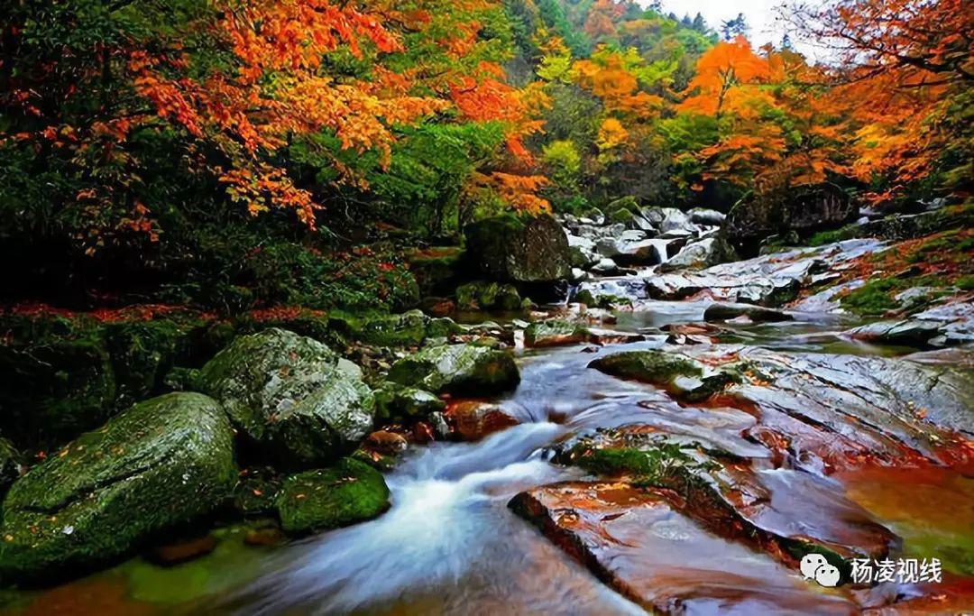 南郑黎坪森林公园