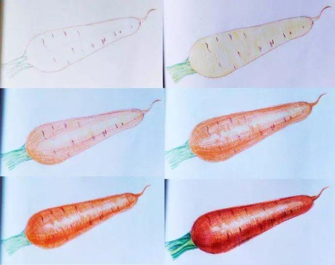 素描手绘-一些简单的彩铅水果,初学者必看