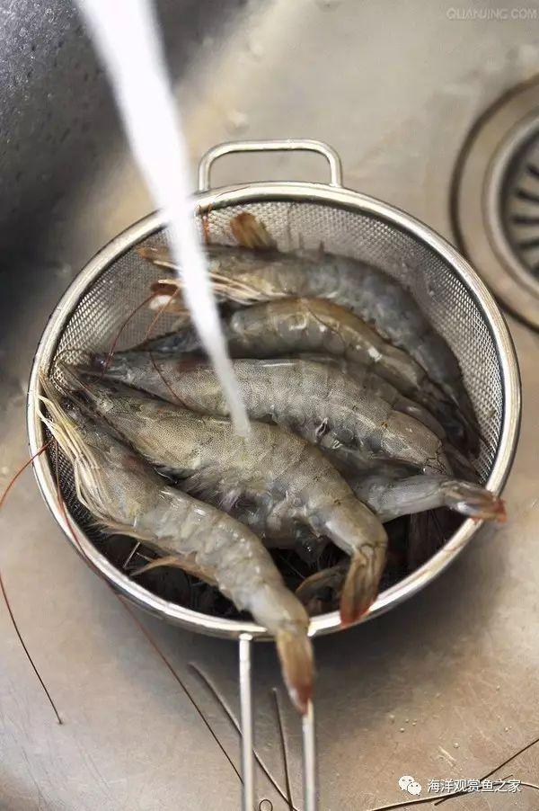 纵横虾海30年整理出来的!对虾、基围虾、南干贝裙边