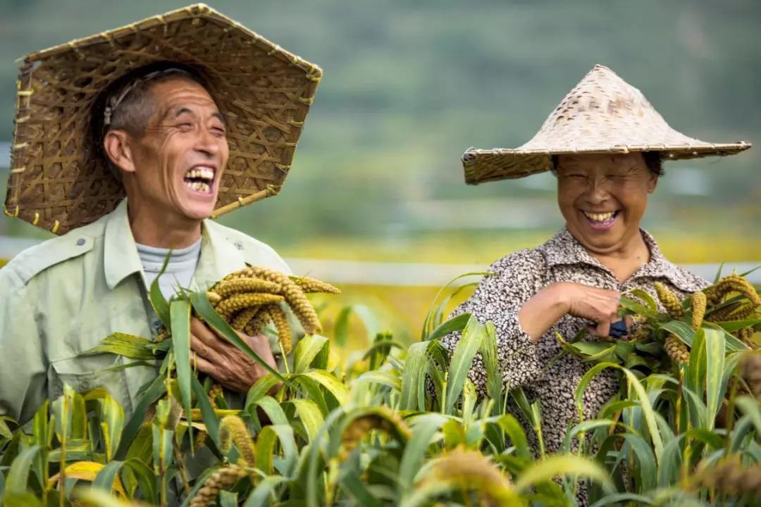 """""""丰收的果实,丰收的味道,丰收的喜悦"""" 一同来博山镇感受吧!"""