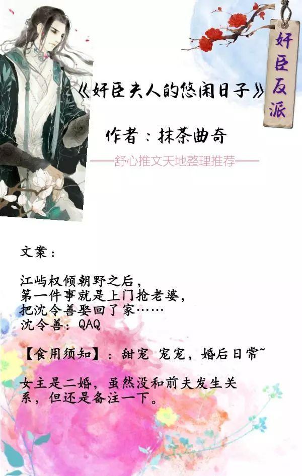 【舒心书单】男主反派奸臣的小说,腹黑霸气又