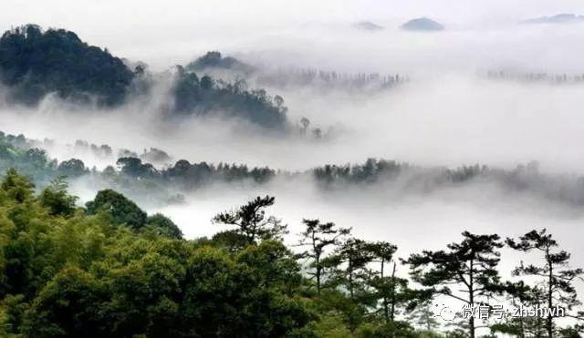 云雾山风景区位于陕西省勉县东北部,秦岭南坡,海拔1500米,风景区内