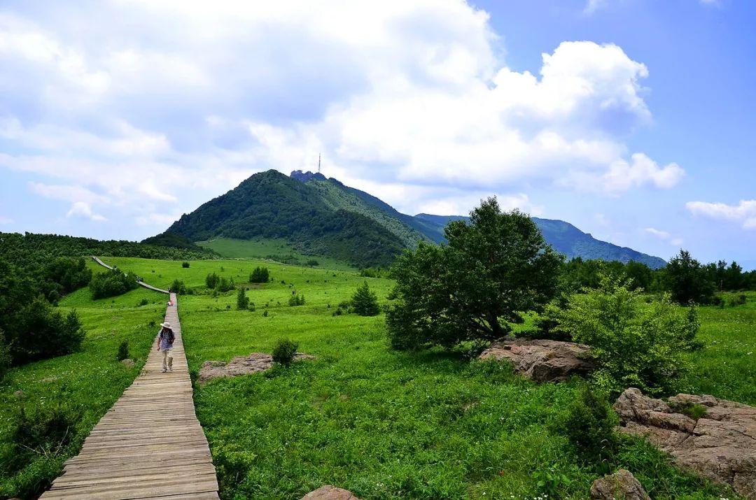 鱼谷洞自然风景区是野三坡七大风景区之一,是以奇泉怪洞为主体的