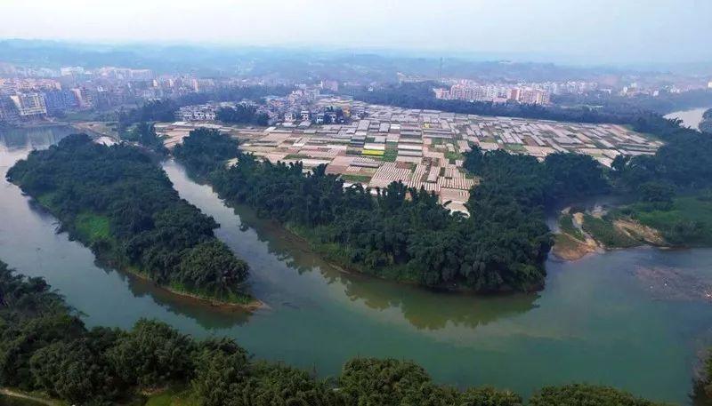 护国镇是川南明珠,魅力古镇,位于四川省泸州市纳溪区南部,总占地
