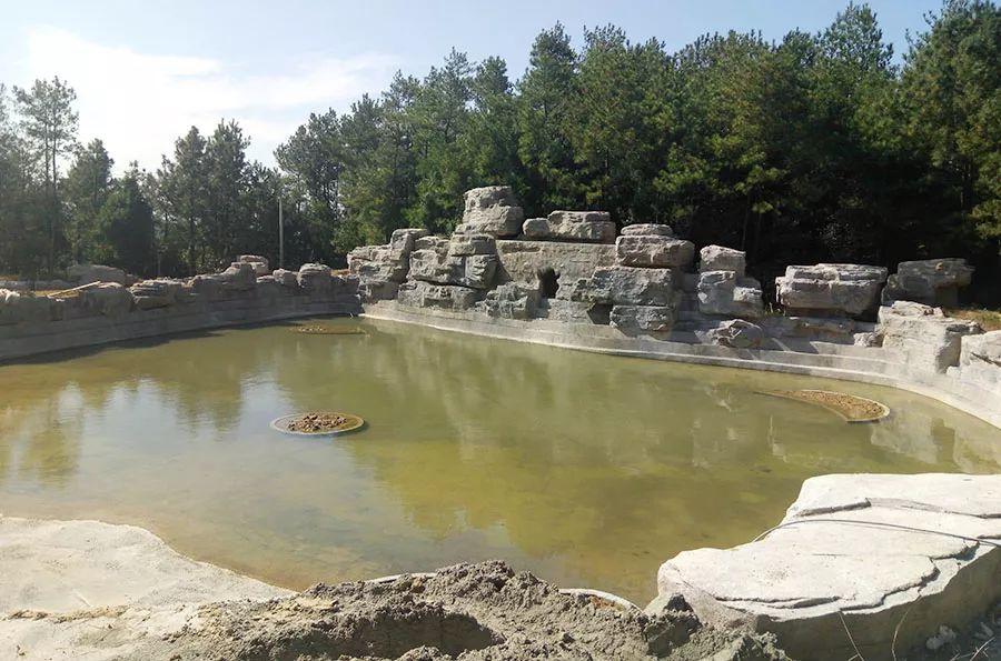 再探达州金石云顶野生动物园最新建设情况,预计明年1月试营业!