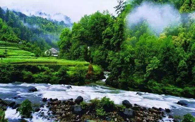 """是历史上一条重要的古道,清志称""""徽饶通衢"""",自然风景十分优美,古树"""