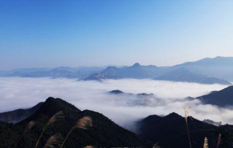 门票:         (图片来源:@赣州晚报)    赣州    安远三百山景区