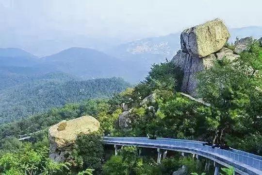 金子山风景区    海拔最高高山森林滑道   滑道建在金子山半山