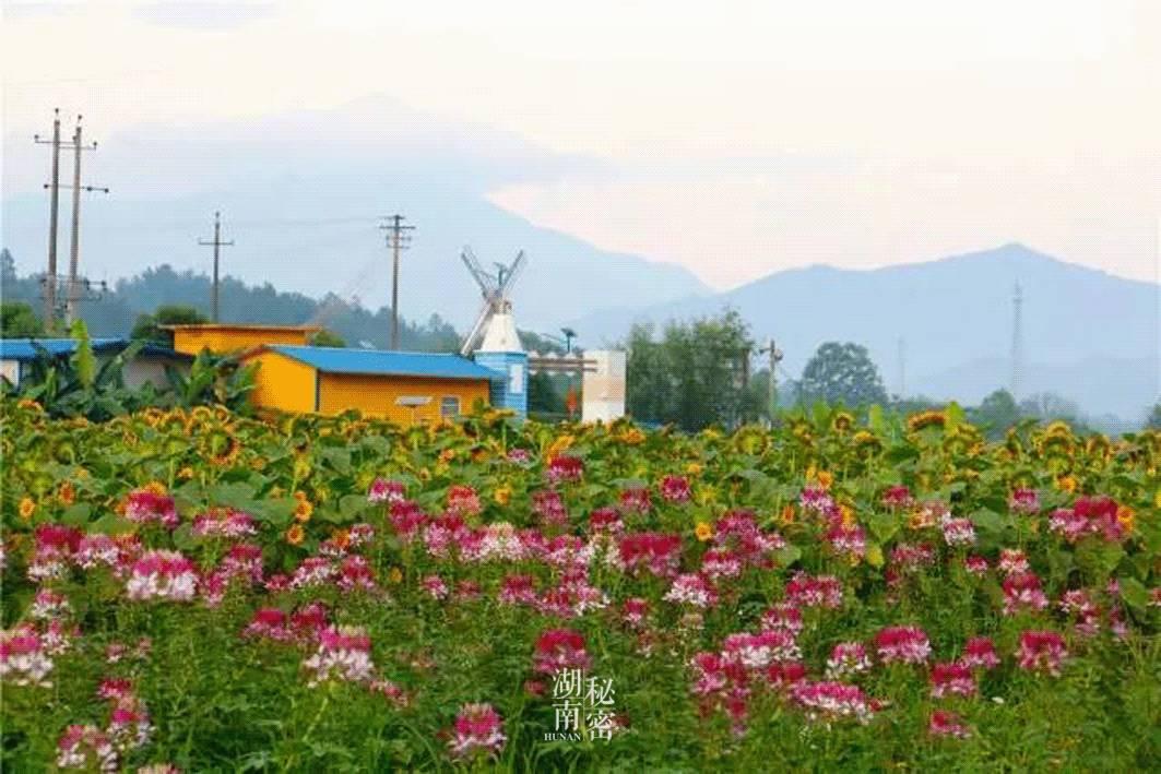 地址:长沙市浏阳市达浒镇021村道象形风景区东南90米