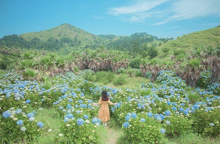 给人有一种自然清新的感觉   与周围的绿植,花草完美地融合在一起