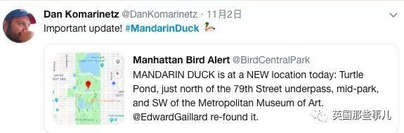 最近,紐約人民被一隻
