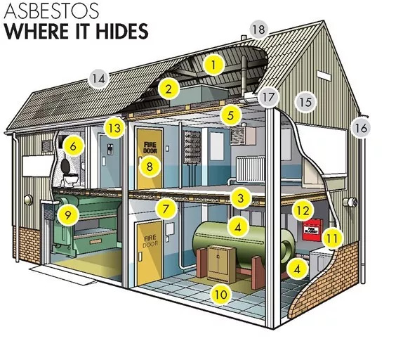 新西兰房屋隐形杀手 | 房东们要注意!你家的这些
