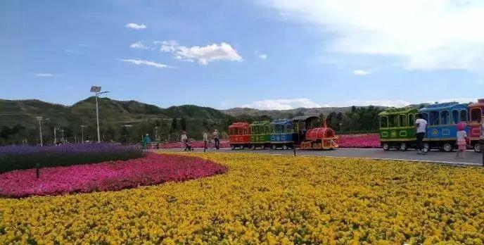 大通景阳花海风景图片