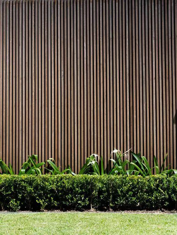 铁艺的围墙和大门   远远能感受到主人家的大气   在小院的绿植图片
