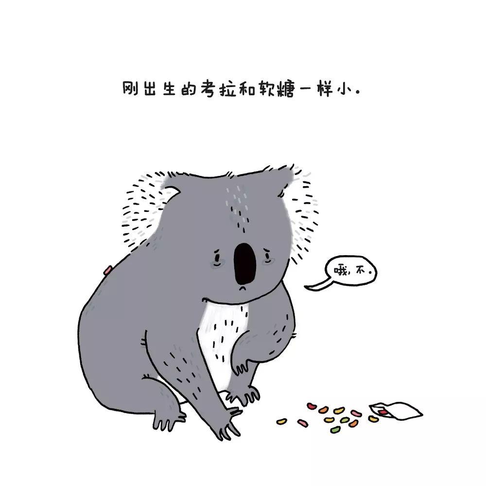 超萌超可爱想哭的图片
