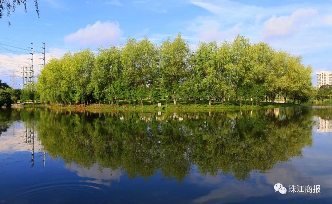 顺德又要放大招了!超级大湖7月开挖,1100亩湖景震撼你