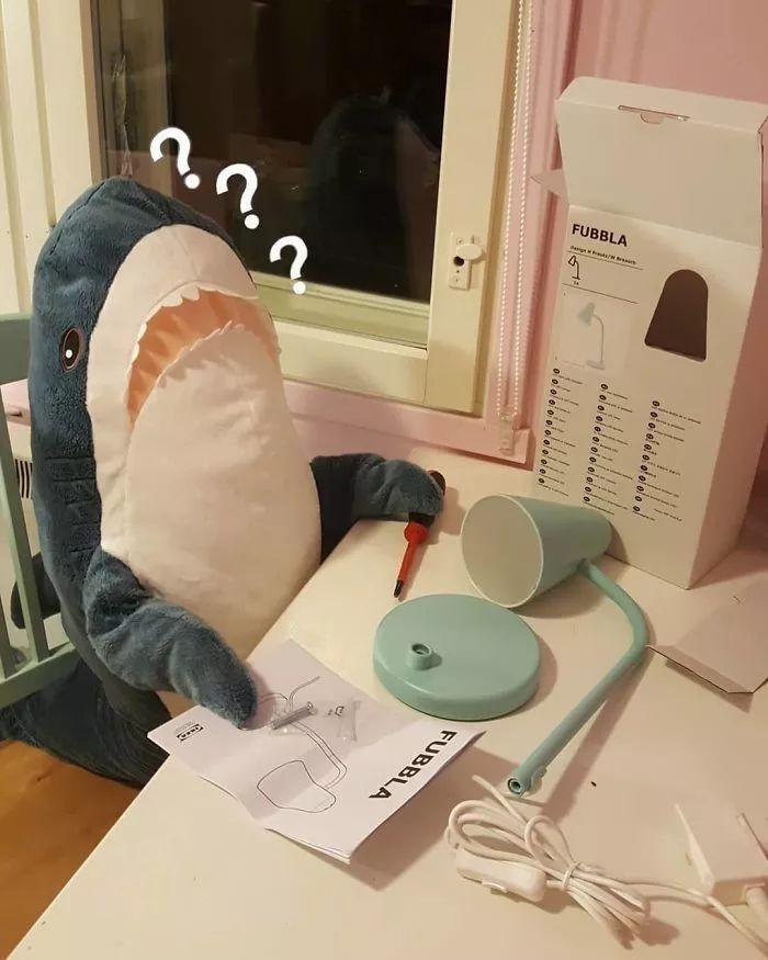 宜家的一條小鯊魚,居然莫名其妙就火了