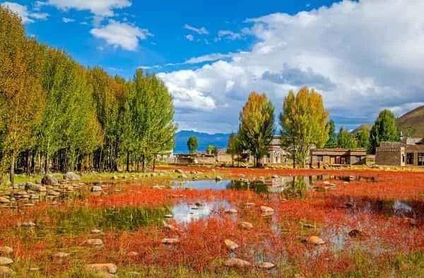 藏族村寨,风景秀丽.