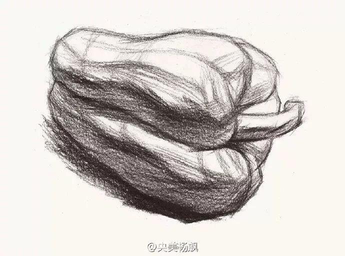 素描青椒图片步骤简单