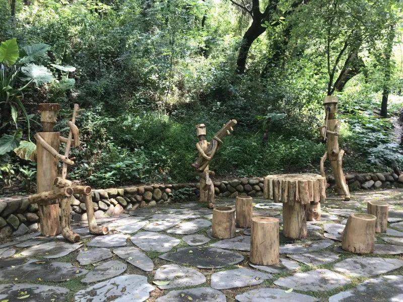 """海沧惊现""""会唱歌""""的木头,已有上百年历史......"""