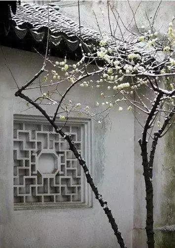 欣赏一个人,始于颜值,敬于才华,合于性格,久于人品,终于慈悲 - 后花园网文 - 精美网文