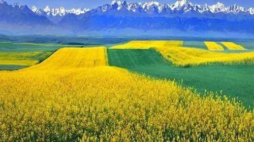 4個月160次彩虹,新疆這個地方的夏天,美如童話世界