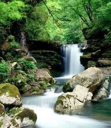 千层河景区山清水秀,有着丰富的自然和人文景观,曾被著名作家