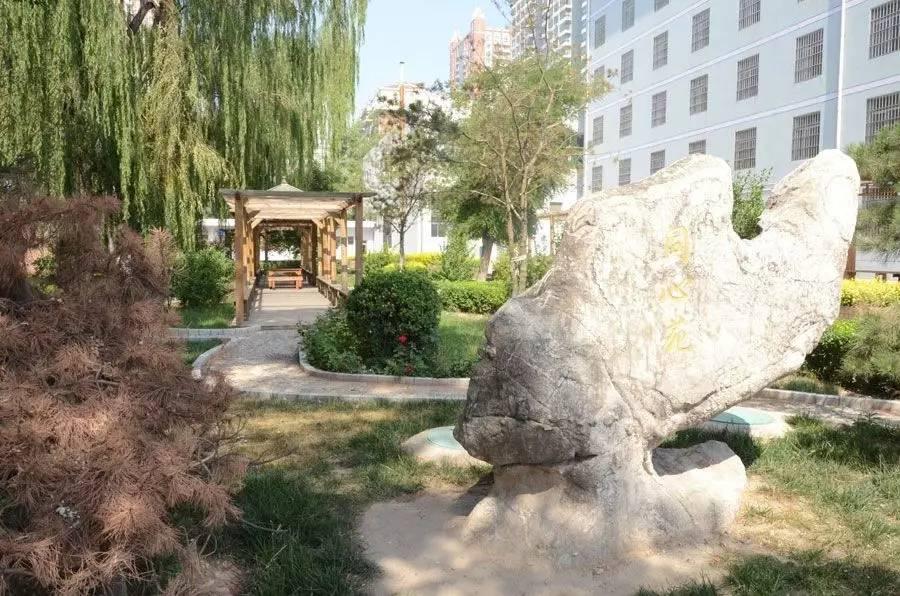 【国语】太原市第二外喜报高中、太原市同心外学校65北京中图片