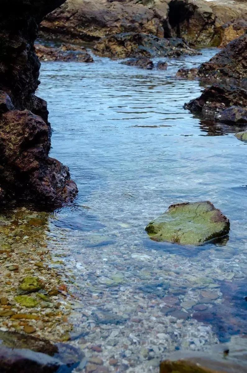 惠州秀丽的海岛还有   三角洲岛,盐洲岛,小星山