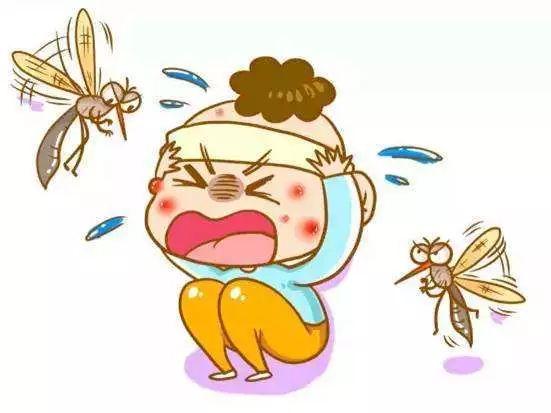 """夏季蚊虫叮咬烦恼多?学会这些,让你不再中蚊子的""""毒""""!"""