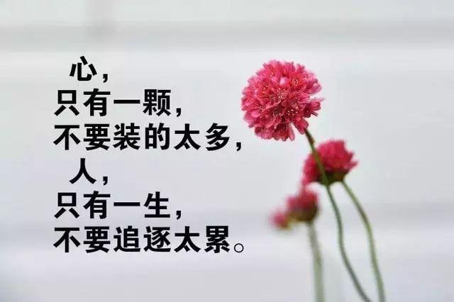 早安正能量励志简短窝心的句子 句句充满正能量