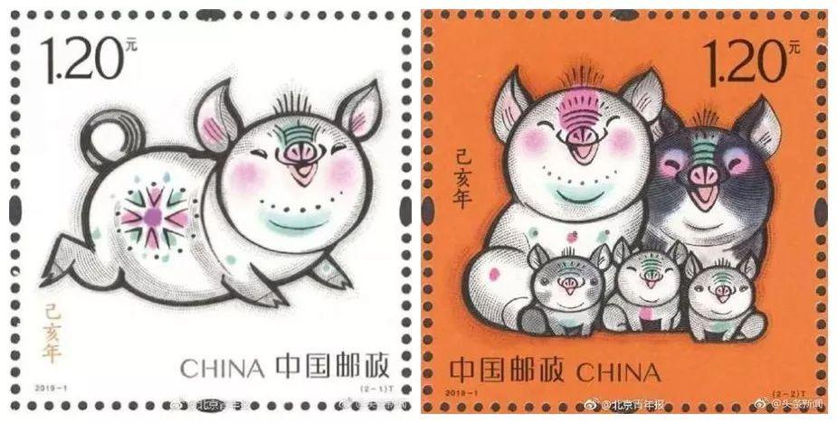 猪年图案设计图片