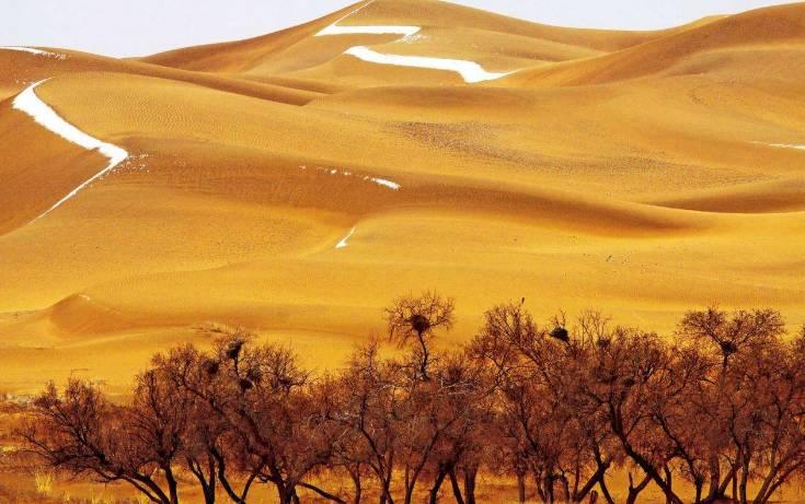 这几种车型组合能耍遍腾格里沙漠,你认可吗?|聚侃
